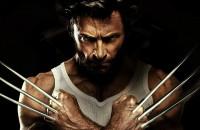 Wolverine 2013 t